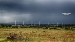 Mais o est Don Quichotte ? (Tra Te E Me (TTEM)) Tags: lumixfz1000 photoshop cameraraw hdr oliennes orage storm nuages clouds paysage landscape couleurs