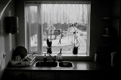 morning runner (asketoner) Tags: morning flowers winter snow window kitchen silhouette daylight hostel sink curtain basin reykjavik plates knives jogging forks runner washing