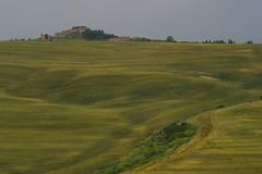 Crete Senesi (Wolfgang.Grilz) Tags: italien landscape italia unesco tuscany siena montalcino pienza montepulciano toscana valdorcia toskana sanquirico tuscanlandscape tuscanspring springitaly