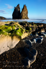 Rialto Beach 1 (saganorth2000) Tags: sunset beach clouds washington nationalpark boulders mossy gravel seastacks rialtobeach rockformation olympicnp