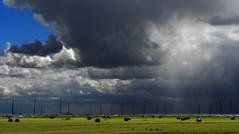 Schardam (Ger Veuger) Tags: weather clouds landscape wolken landschap noordholland dutchlandscape weer markermeer schardam noordhollandslandschap
