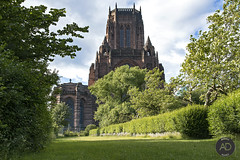 Of angles and angels (alun.disley@ntlworld.com) Tags: city trees sunlight church grass architecture clouds liverpool landscape religion hedgerows lowpov liverpoolanglicancathedral