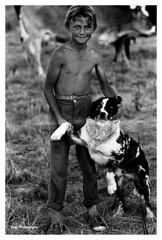 Vaquero y su perro (Imati) Tags: rural trabajo nikon perro verano prado 1968 nio mundo vaquero vacada elmaderal
