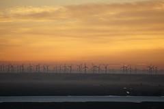 DSC01321 (Photos at SFEI) Tags: california water sunrise delta kr riparian landscapeorientation southdelta