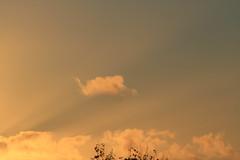 West Auckland sunset (Zelda Wynn) Tags: sunset weather cloudscape crepuscularrays troposphere zeldawynnphotography
