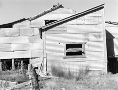 35mm B/W film - Shearing Shed, Orroral Valley Homestead, Orroral Valley, Namadgi National Park, outside Canberra ACT Australia (John Panneman Photography) Tags: bw blackwhite australia olympus canberra act shearingshed om1n orroralvalley namadginationalpark orroralvalleyhomestead