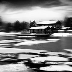 Anpassning 06 (Jaqueline Vanek) Tags: schnee winter sky white snow black cold bird art blanco ice contrast landscape sweden nieve negro fine paisaje cielo series invierno concept pajaro frio hielo suecia jaqueline svenska vanek anpassning