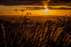 Sunset over Stoke on Trent (Raven Photography by Jenna Goodwin) Tags: sunset summer grass sunshine clouds golden trent hour end stokeontrent staffordshire stoke hanley flickrfriday lifeislikeaboxofchocolates removedfromflickrfridaynotthecurrenttheme