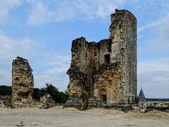 Château de Fère en Tardenois - Aisne (Vaxjo) Tags: france castle ruins 02 château castillo castelli picardie ruines aisne tardenois fèreentardenois