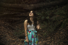 Melody_227 (stephanym.rodriguez1) Tags: flowers blue trees red portrait orange sun white black green bird fall nature floral girl leaves birds rose yellow forest dark hair photography shadows dress forrest longhair feather naturallight tattoos melody portraiture stephanie tatoos enchanted stephany inked tattos tats feayhers stephanyrodriguez