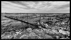 No trespassing (@photobjorn) Tags: bw beach water monochrome clouds landscape rocks sweden wide wideangle baltic d200 169 fårö tokina12244 apsc silverefex