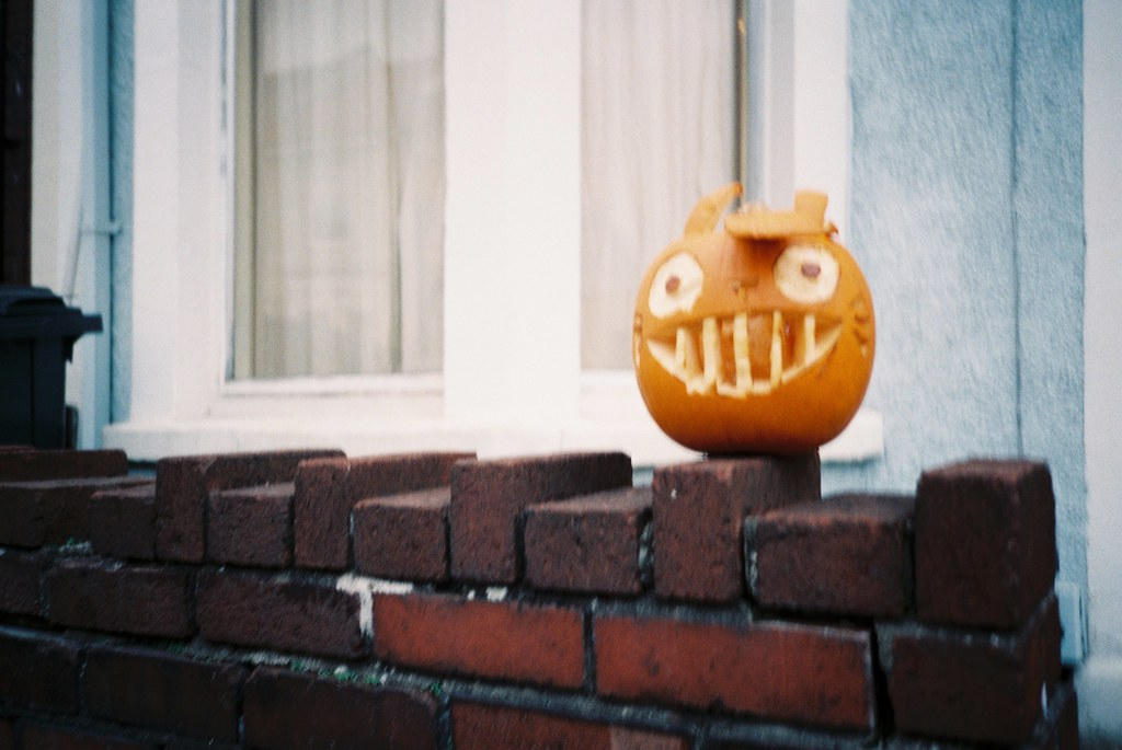 The world s best photos of pumpkin and totoro flickr