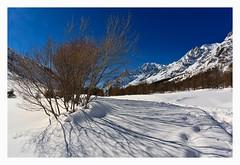 (Candideou l'optimisme) Tags: snow neve canon5d valledaosta valferret