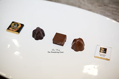 Tasting plate of bars and pralines (thewanderingeater) Tags: newyorkcity chocolate amedei luxurychocolate italianchocolate