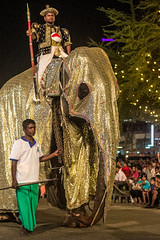 "Elephant - Nawam Perahera <a style=""margin-left:10px; font-size:0.8em;"" href=""http://www.flickr.com/photos/40608624@N00/15813940684/"" target=""_blank"">@flickr</a>"