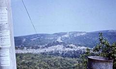 RO_BG_Bp_85_083 (Tai Pan of HK) Tags: bulgaria bulgarie velikotarnovo  republicofbulgaria    rpubliquedebulgarie greattrnovo grandetrnovo