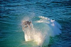 Cameron Gurwell (Juliana Beletsis) Tags: california sports water waves sandiego lajolla southerncalifornia skimboarding wipeoutbeach
