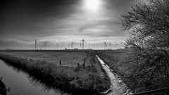 Breedschift Graben (unbunt.me) Tags: landscape blackwhite landschaft fujix100t