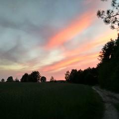 #zachd soca #wiosna #las #chmury #sunset @fashionavenuepl (Kurtki.Damskie.PL) Tags: las sunset zach wiosna chmury fashionavenuepl uploaded:by=flickstagram instagram:photo=991135091986604315222664679