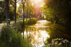 DSC_6762-1 (ontonivo) Tags: travel sunset water ostfriesland channel hinte