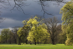 Colours of spring (**MIKA**) Tags: park babelsberg gewitterwolken