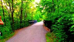 Shaw Creek Bridge (neukomment) Tags: bridge puremichigan nct hiking railstotrail whitepinetrail scenicmichigan michigan westmichigan paths trails green shawcreek usa spring creation nature woodlandwonders may perspective beautifulearth