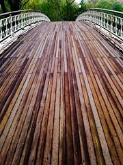 Bridge, Central Park West (Rodrigo_Correa) Tags: nyc bridge centralpark