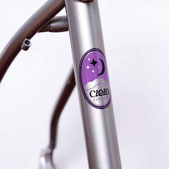 Cielo by Chris King / Mountain Frame with Whisky Fork (starfuckers / Above Bike Store) Tags: cielo chrisking