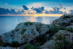 Dingli Cliffs - Malta 2016 (DSC_0380-1) (jocelynmifsud) Tags: travel seascape seaside malta cliffs dingli travelphotography dinglicliffs maltaphotography