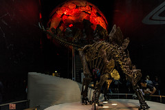 guard of the gate of hell! (Ntino Poulak photography) Tags: uk red london skeleton lowlight escalator naturalhistorymuseum dinosaurs canon600d