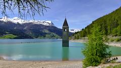 See (Rolfmundi) Tags: italien strand see wasser berge wald bume sdtirol kirchturm vinschgau