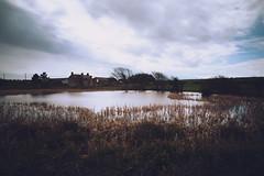 St Brides Major pond (technodean2000) Tags: uk st wales major pond pub nikon south brides lightroom d610