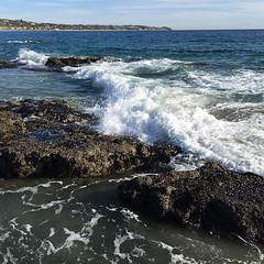 IMG_8702 (emilie raguso) Tags: beach socal southerncalifornia elmatador 2016