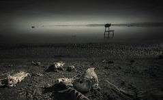 Lost Somewhere In Your Mind II (Israel Woolfolk) Tags: california landscape lost death blackwhite surreal forgotten fishbones deserted saltonsea bombaybeachruins