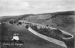 The Box Hill zigzag (mgjefferies) Tags: road england surrey dorking zigzag boxhill 1909
