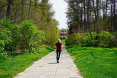 walk (#KPbIM) Tags: park spring michigan may cranbrook bloomfieldhills 2016