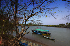 Nerul River, Goa (Vamshi Krishna S) Tags: goa nerul aguada fort