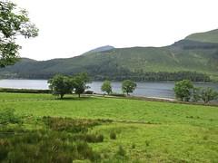 1707 Llyn Cwellyn - reservoir (Andy panomaniacanonymous) Tags: 20160606 ccc cymru gwynedd lake lll llyncwellyn northwales photostream reservoir rrr wales welshhighlandrailway