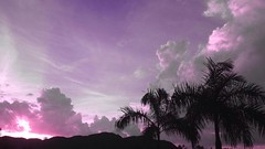 Clouds And Sky Sky And Clouds Resplandor Siluet Palm Trees Amanecer Colorful Taking Photos Colombia (nathaliacl10) Tags: colorful colombia amanecer palmtrees skyandclouds siluet takingphotos resplandor cloudsandsky