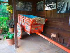 P1140608 (lychee_vanilla) Tags: costarica heredia coffeetour cafbritt