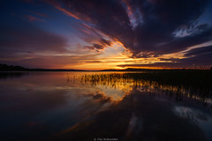 Sunset Mritz Nationalpark (Tim Schneider - Pulse of Nature Photography) Tags: sunset cloud sun lake water weather germany landscape deutschland see wasser sonnenuntergang sony wolken landschaft sonne wetter mritznationalpark mecklenburgvorpommer