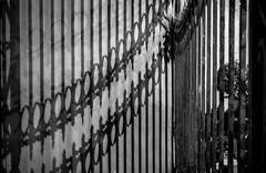 Shadows of the Metal Barrier (Puebla, Mxico. Gustavo Thomas  2016) (Gustavo Thomas) Tags: blancoynegro monochrome lines night mexico reja noche bars shadows barrier puebla nuit sombras blancetnoir monocromtico