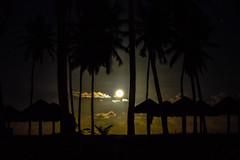 Moonlight at Iberostar (Jorge Hamilton) Tags: bahia brasil brazil praia do forte arco ris rainbow lua luar farol beach moolight jorgehamilton brandao brando
