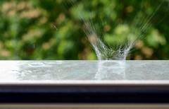 A goccia a goccia si scava la roccia (encantadissima) Tags: macro estate bokeh splash pioggia goccia nikond7000
