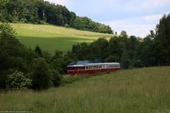M 131.1302 Bix M 262.1183 (NovakMice) Tags: vlak vlaky train trains m1311302 bix m2621183 m1311 m2621 eskkamenice czech esko eskrepublika kcdoprava hurvnek