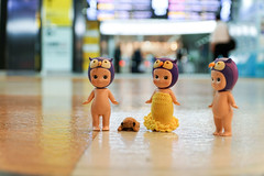 Please boys no more sightseeing! (omgdolls) Tags: wednesday wiener angels sonny