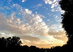 181/366 The Sky Tonight (Bernie Anderson) Tags: light sunset summer sky cloud sun tree nature weather silhouette landscape outdoors person evening no fair greenville 500px ifttt yeahthatgreenville