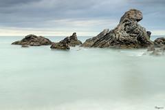 Curso Benito_155 (Proyecto Vegaeris) Tags: de playa fucsia pearronda
