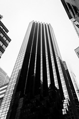 Elevated (Tamara Dobry) Tags: new york nyc city buildings empire state building manhattan met life people journalism black white flat iron chaos panning motion blur cars business taxis grand central station clouds fashion travel photography sigma lens nikon d610 full frame tamara dobry red mill village clinton jersey high views