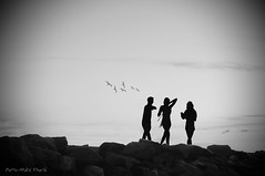 Ballade nocturne ... ( P-A) Tags: nature silhouette nb ciel monde personnes gens visiteurs marcheurs cvgr aylmerqc clubdevoilegranderivire photossimpa